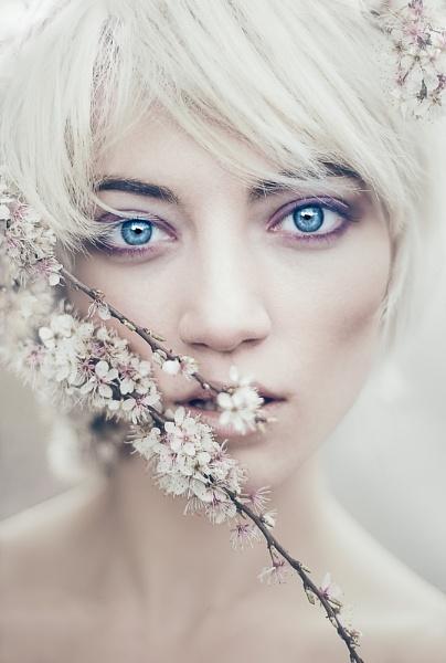 Spring by RyanBater