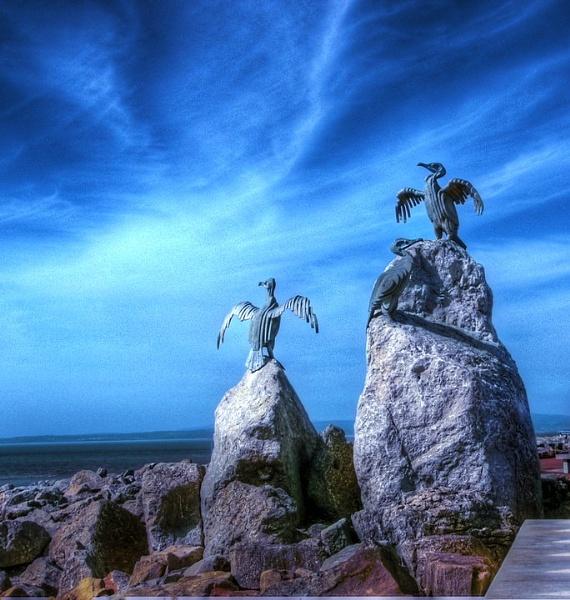 The Birds! by clickon