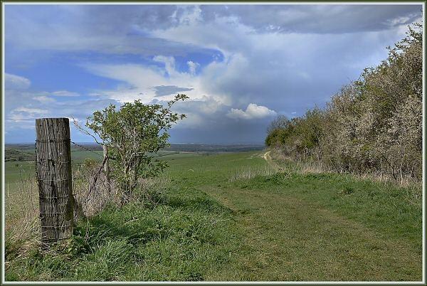 Wayfarer\'s Walk, Hampshire Downs by JPatrickM