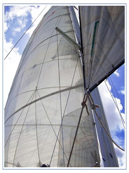 Sailing by vikki9876