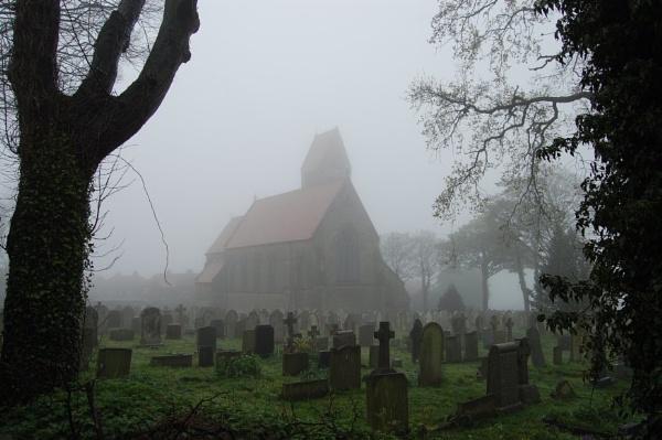 Foggy Morning by leginR