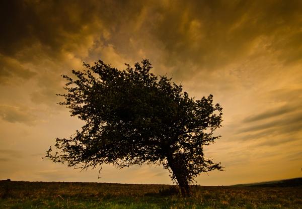 Windswept by BigE
