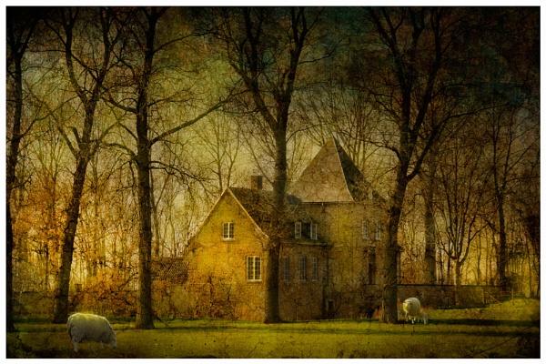 In Flanders. by Cor