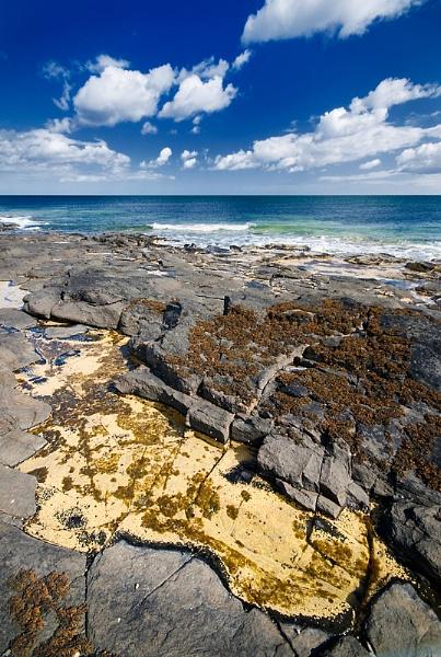 Northumberland Coast by bart_hoga