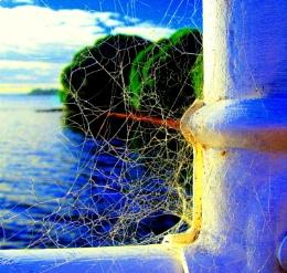 spiderartwork ...