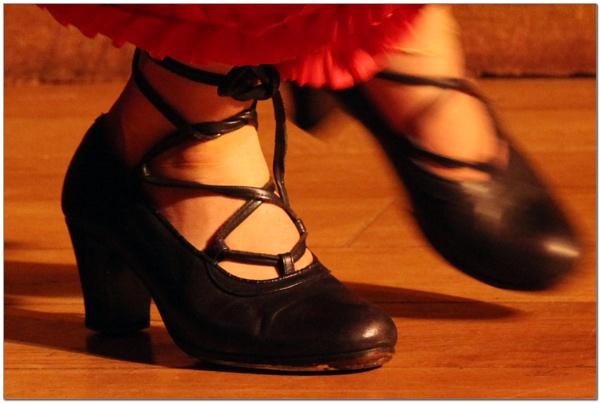 Flamenco Dancer by Albright