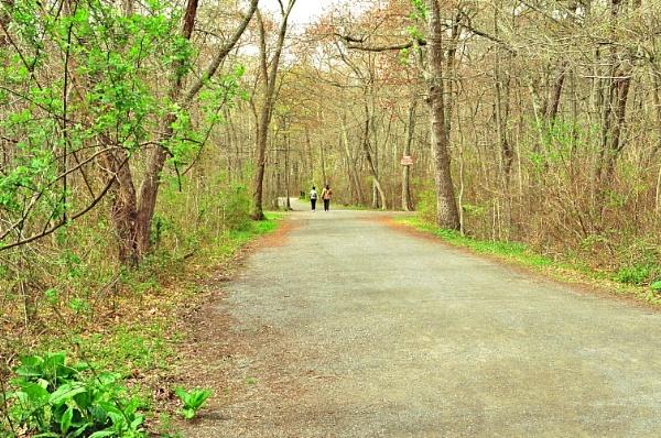 Walking away by efim_p