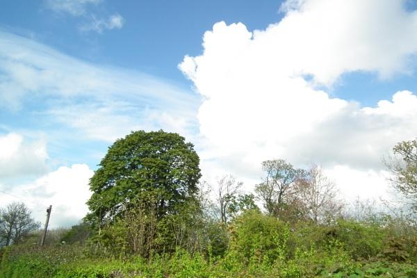Haverfordwest skyshot by Timpsonboy