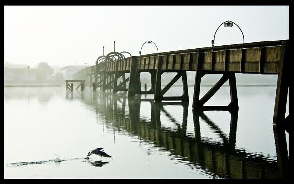 The Bridge by incognito