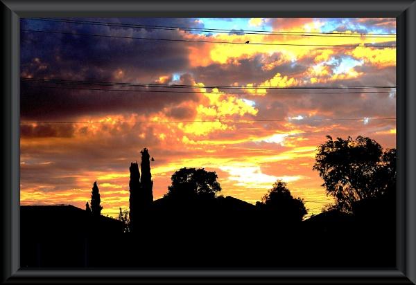 Fire In The Sky by danmclean