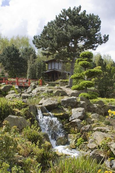 Japanese garden by lionking