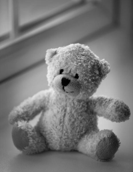 Teddy by MrGoatsmilk