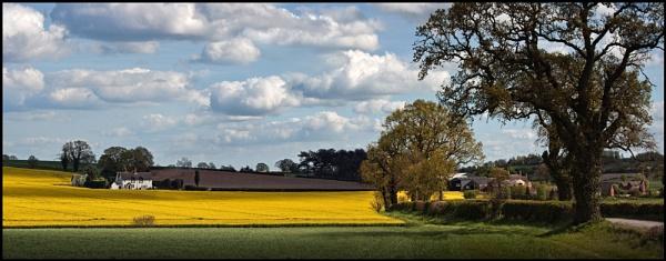 A Little Bit of England. by Niknut