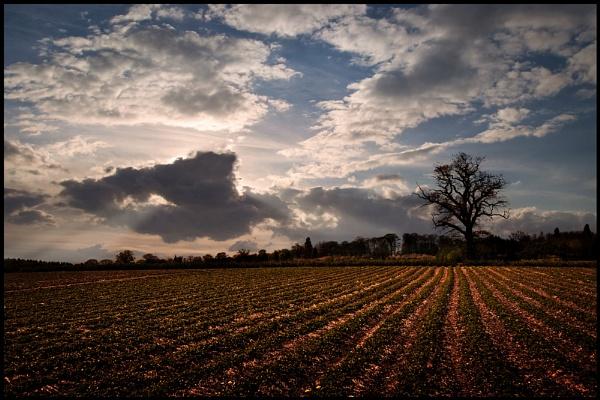 Shropshire Skies. by Niknut
