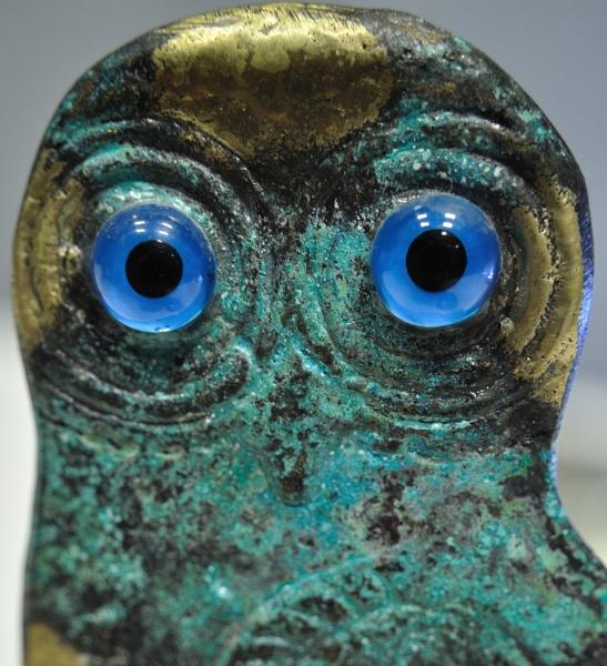The eyes by kiwi3636