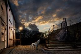 Wolf's Widow