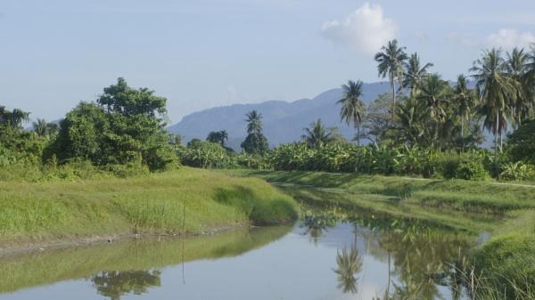 Sungai Nipah, Balik Pulau.