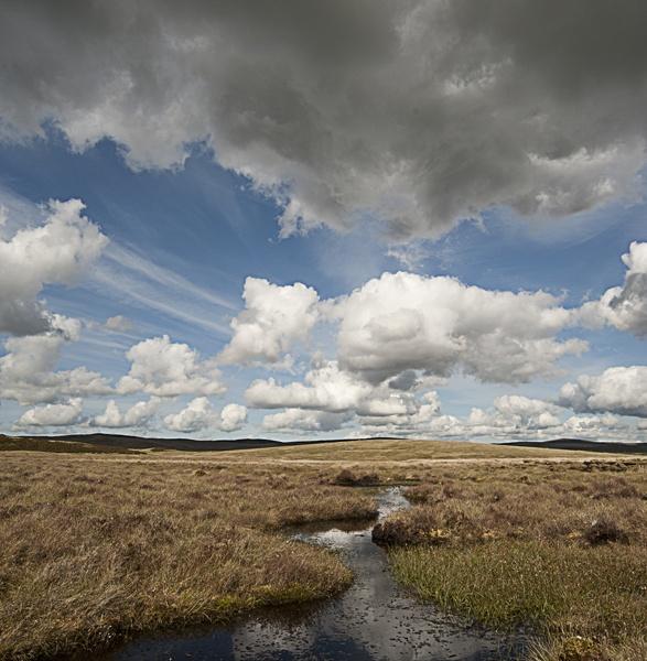 Open moorland by wynn469