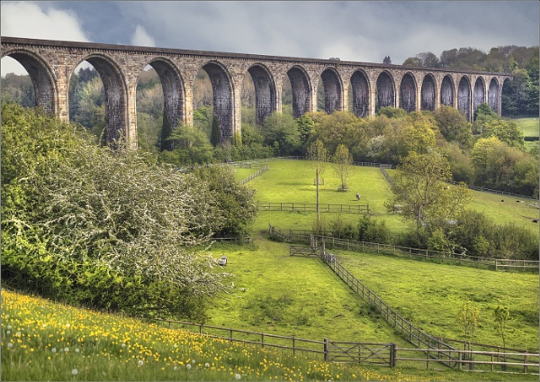 16 ARCHES by GERRYGENTRY