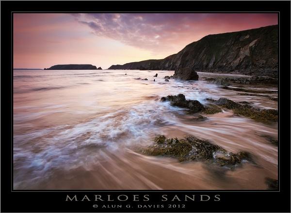 Marloes In the Pink by Tynnwrlluniau