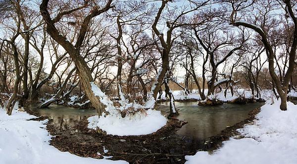 Mirage Winter by saeedyounesi