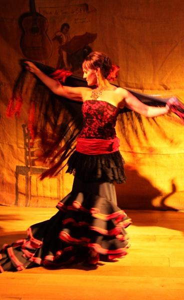 Flamenco Lady by Albright