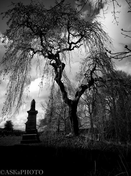 graveyard by amyadamson