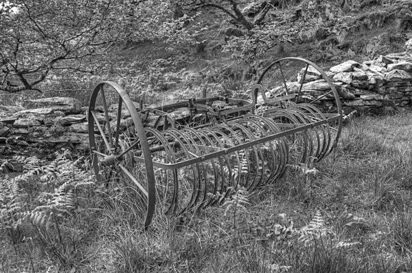 Old Hay making sweep by wynn469