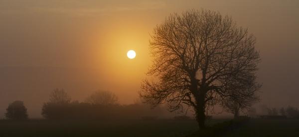 sunrise too by PaulLiley