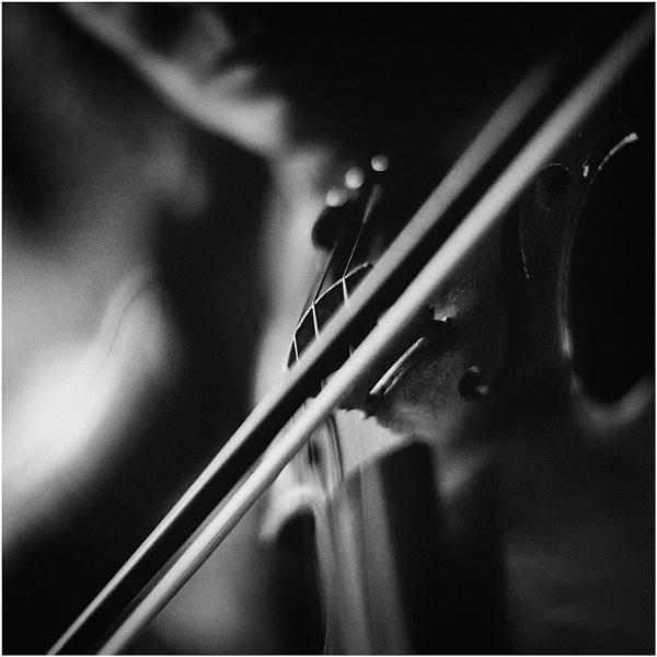 Virtuosa II by Nic_WA
