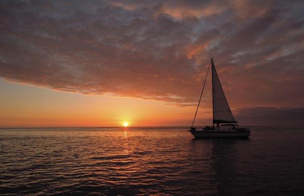 Sarasota Bay by purplejellyfish500