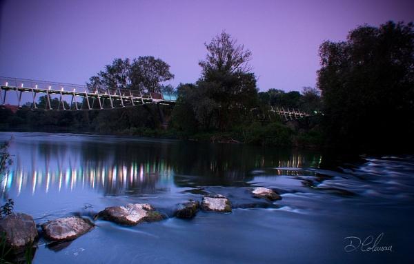 The Living Bridge by DerekColeman