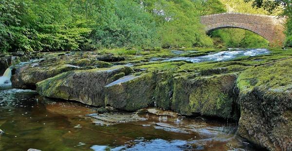 Verdant waters. by Adrianwalker