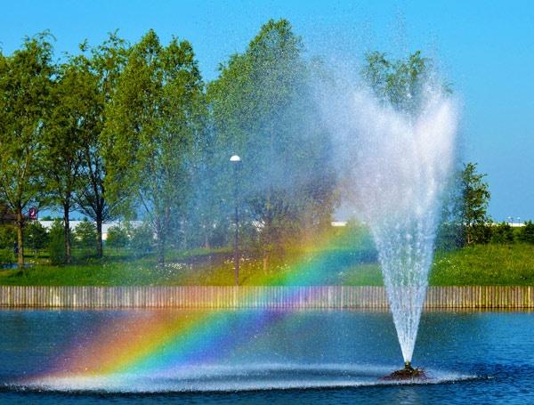 A Little Splash Of Colour by StevenPrice