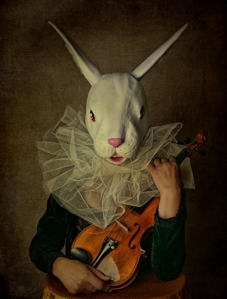 Fiddling...... by cattyal