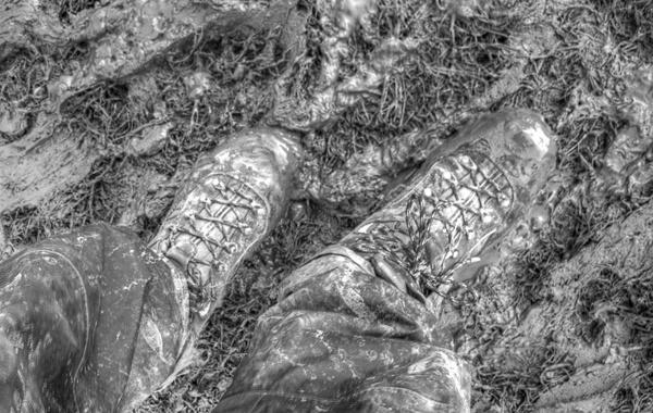 Mud mud glories mud by wynn469