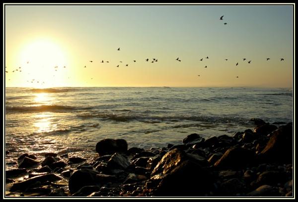 Follow the sun by Elsabe
