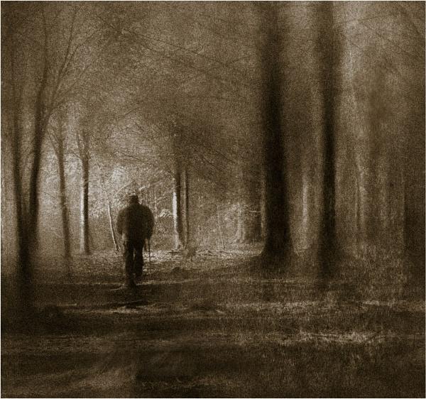 The Dark Wood by MalcolmM