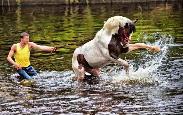 Appleby Horse Fair 2012 by jokinarnya