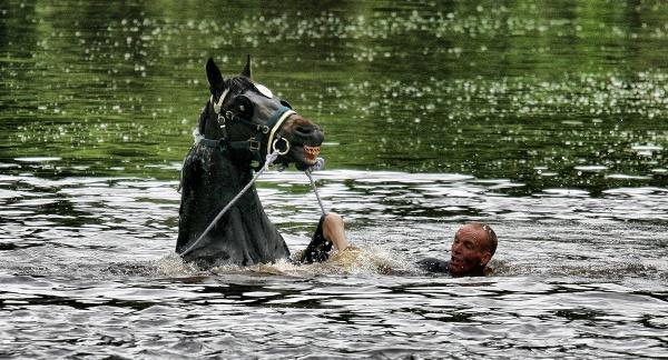 Appleby Horse Fair. by jokinarnya