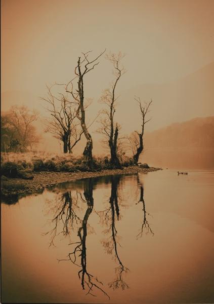 Tranquillity by wynn469