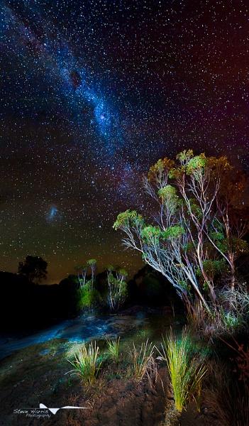 Stary Night by SteveHarry