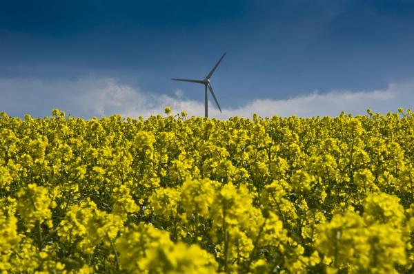 Eakring windmill by Wilbo50