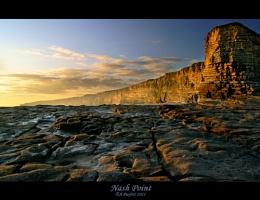 sunny coast 2