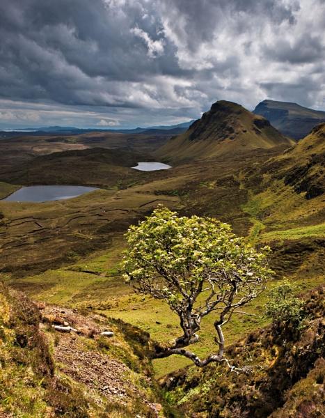 The Quiraing  (Isle of Skye) by bill33