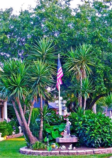 Front Yard Garden by timduck