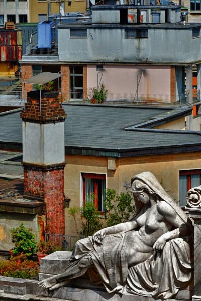 Urban Beauty by tony_hoops