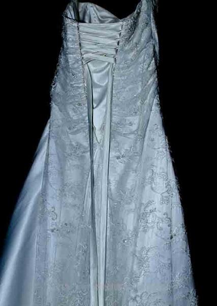The dress by CarolAnnPhotos