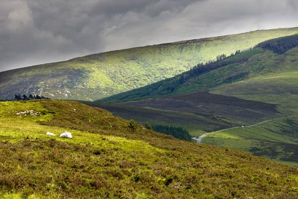 Mount Leinster by Hilmar