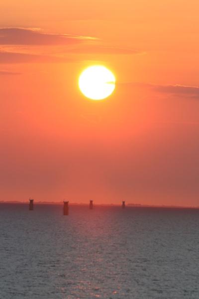 sun soaked sea stumps by mellowsoup